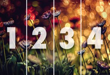 Vlies Fototapete Blumen und Lichter 368x254cm – Bild 3
