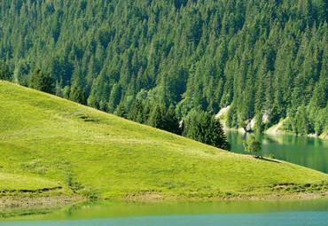 Vlies Fototapete Schweizer Bergsee Launensee Gstaad 368x254cm – Bild 3