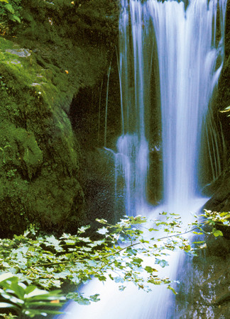 Wall Mural Waterfall in Spring – Bild 4