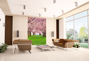 Wall Mural Cherry Trees