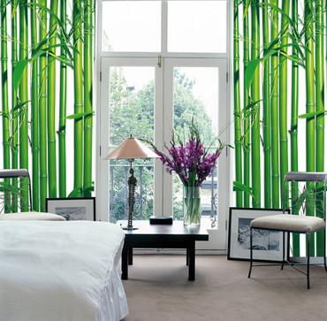 Fototapete Bambus – Bild 1