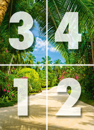 Wall Mural Tropical Pathway – Bild 3