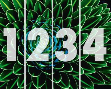 Vlies Fototapete Pflanze als Kunst – Bild 3