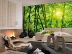 Wall Mural Bamboo Forest 001