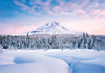 Wall Mural Mountain Graceful 001