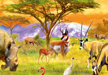 Wall Mural African Animals – Bild 4