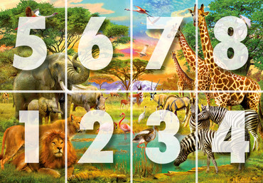 Wall Mural African Animals – Bild 3