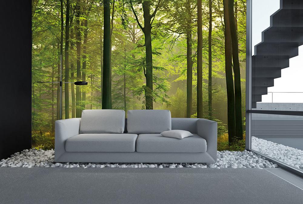 fototapete wald gr n papier fototapeten xxl papier fototapeten. Black Bedroom Furniture Sets. Home Design Ideas