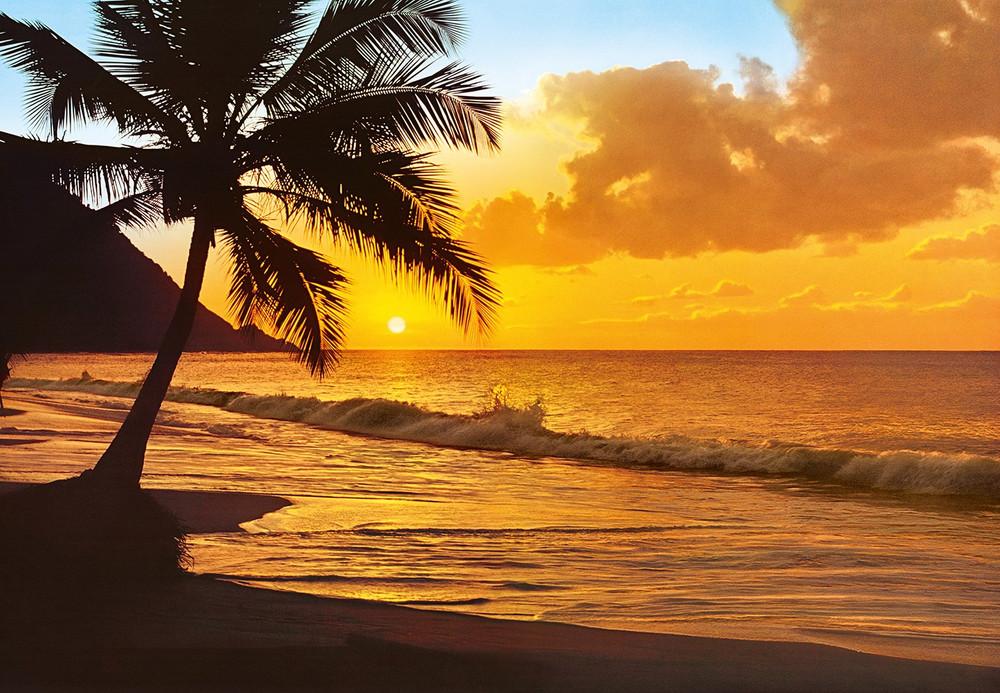 fototapete strand meer palme sonnenuntergang fototapeten. Black Bedroom Furniture Sets. Home Design Ideas