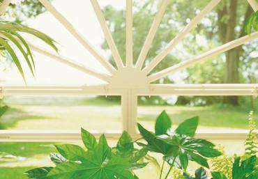 Fototapete Wintergarten mit grünen Pflanzen – Bild 4
