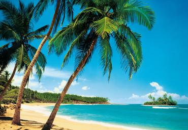 Fototapete Strand Meer Palmen und Insel – Bild 2