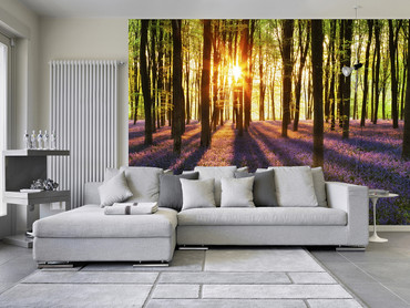 Non-Woven Wall Mural Woodland at Dawn – Bild 1