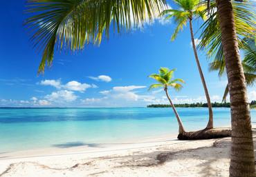 Vlies Fototapete Strand Palmen Meer – Bild 2