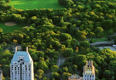 Fototapete New York Manhattan Central Park Luftaufnahme – Bild 4