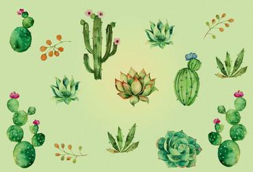 Fototapete Modern Pflanzen Kaktus als Kunst – Bild 2