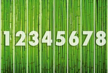 Fototapete Bambus Wand Grün – Bild 3