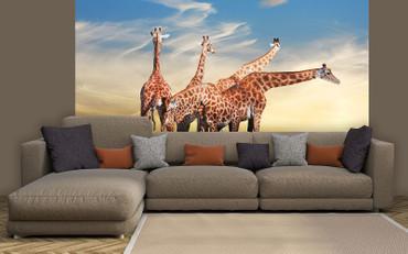 Fototapete Giraffen – Bild 1