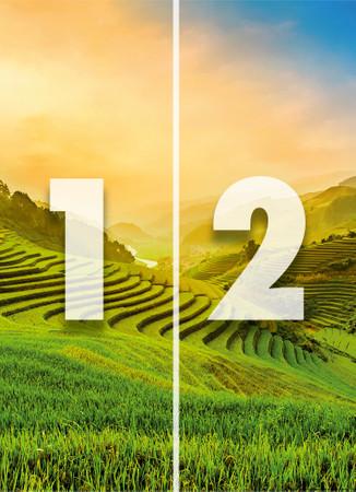 Papier Fototapete Terassenförmig angelegtes Reisfeld in Vietnam 184x254cm – Bild 4