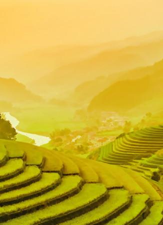 Vlies Fototapete Terassenförmig angelegtes Reisfeld in Vietnam 184x254cm – Bild 3