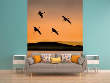 Vlies Fototapete Vögel bei Sonnenuntergang 184x254cm – Bild 2