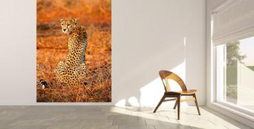 Vlies Fototapete Leopard Safari 184x254cm – Bild 2
