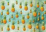 Papier Fototapete Tropische Ananas 368x254cm 001