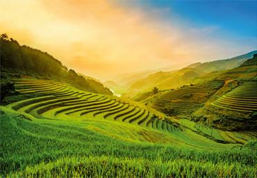 Papier Fototapete Terassenförmig angelegtes Reisfeld in Vietnam 368x254cm
