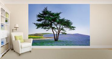 Papier Fototapete Baum & Blumen in Japan 368x254cm – Bild 2