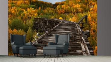 Papier Fototapete Brücke im Wald 368x254cm – Bild 2