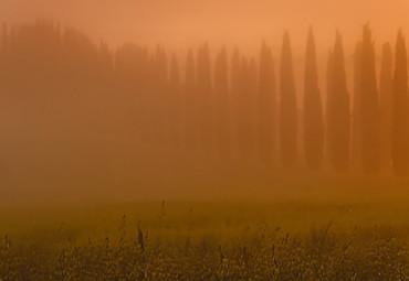 Papier Fototapete Toskana Sonnenaufgang 368x254cm – Bild 3
