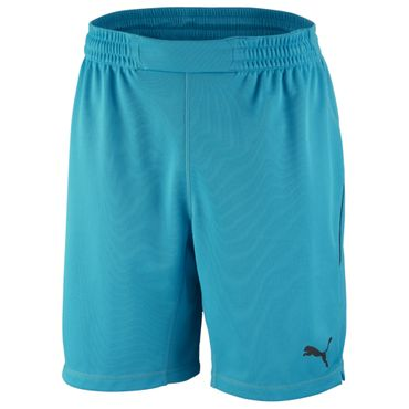 Puma GK Shorts - Kinder Torwartshorts - 701919-41