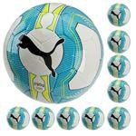 10x Puma evoPOWER Vigor Lite 3 290g - Fußball Trainingsball - 082557-01 001