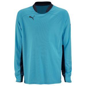 Puma Shirt - Herren Trikot - 701918-41