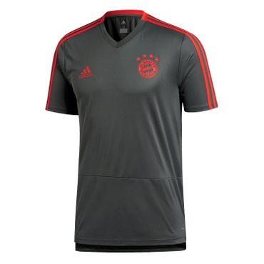 adidas FC Bayern München Herren Trainingstrikot 18/19 - CW7262 grau