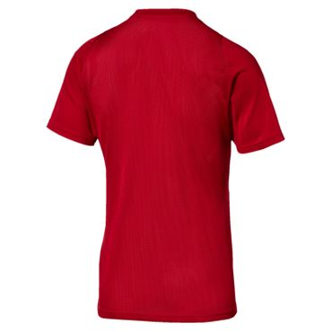 Puma Herren Funktionsshirt Training Running Freizeit T-Shirt - 655357-51