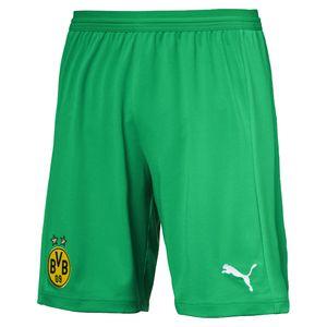 Puma BVB Borussia Dortmund Herren Shorts Replica 18/19 - 753328-04 grün