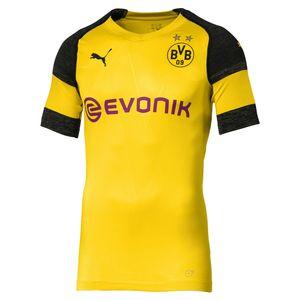 Puma BVB Borussia Dortmund Herren evoKNIT Authentic Heimtrikot 18/19 753298-01 gelb