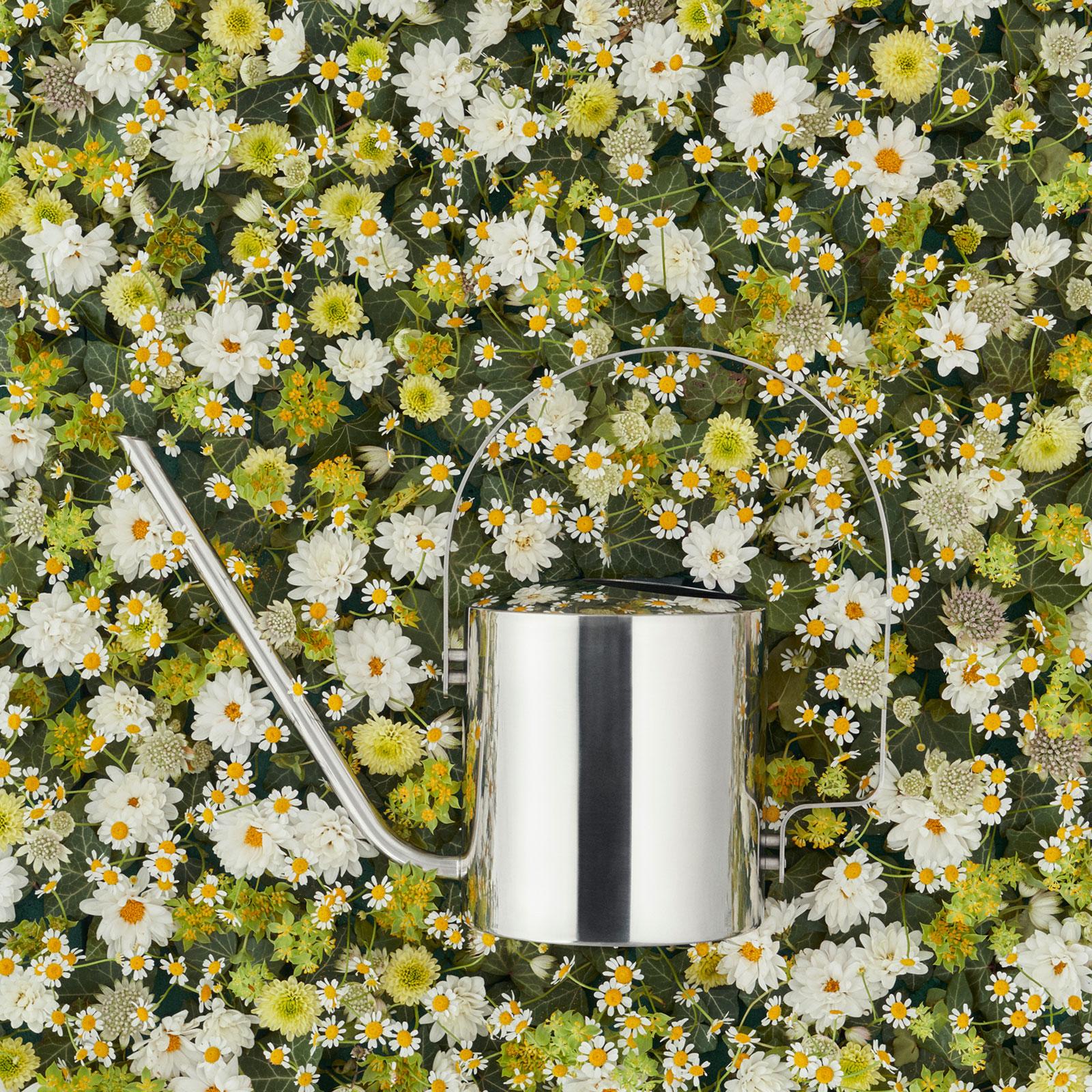 stelton ORIGINAL Blumengießkanne 1,7 l