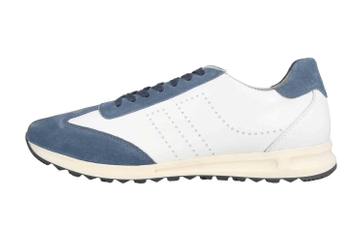 Josef Seibel Thaddeus 11 Sneaker in Übergrößen Mehrfarbig 41411 TE449 093 große Herrenschuhe – Bild 1