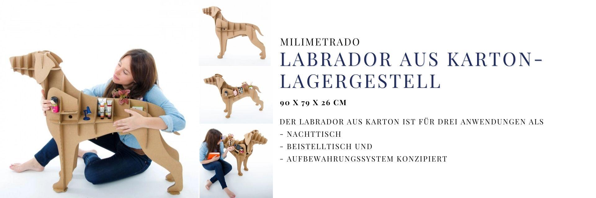 Labrador-Schrank aus Karton kaufen