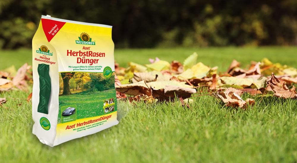 Starker Rasen – dank Düngung im Herbst