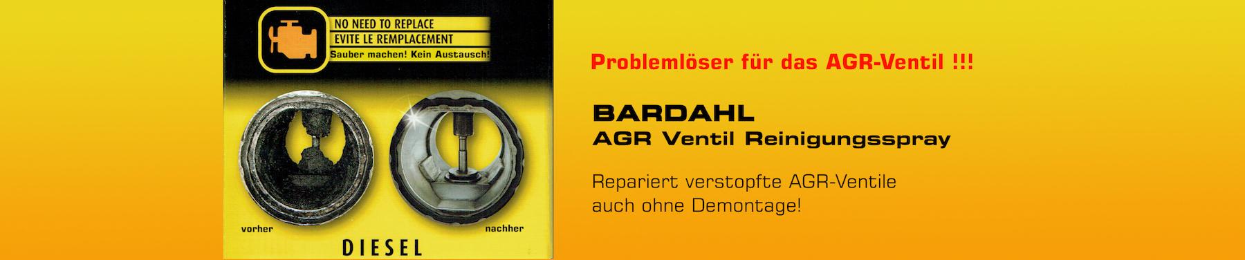 AGR-Ventilreinigung