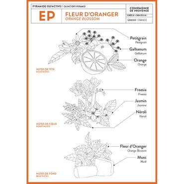 Flüssigseife Orangenblüte 500 ml - Compagnie de Provence – Bild 4