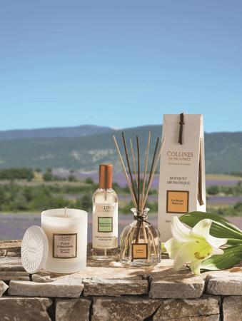 Duftbouquet Weißer Tee 100 ml - Collines de Provence – Bild 2