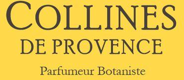 Duftbouquet Grüner Tee 100 ml - Collines de Provence – Bild 3