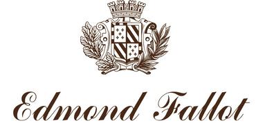 Süßer Senf mit Gewürzen 105 g - Edmond Fallot – Bild 2
