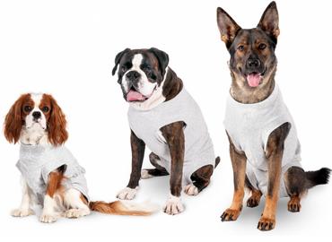 Hunde Safety Body zum Schutz vor Wunden - 36x48 cm