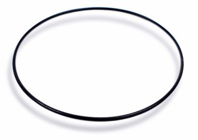 Citizen Bodendichtung O-Ring schwarz AT0455-55F AT0456-52F AT1131-51A