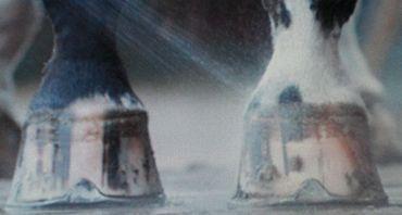 AQUA2Go DRUCKREINIGER GD70 – Bild 7