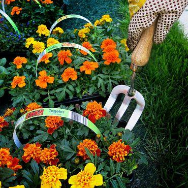 Grüntek Pflanzgabel Blumengabel, 31x8 cm, aus Edelstahl mit Holzgriff aus Buchenholz – Bild 5